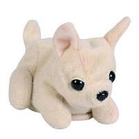 """Мягкая игрушка «Chi Chi Love» (5897616) собачка Чихуахуа """"Игривый щенок"""", 13 см"""