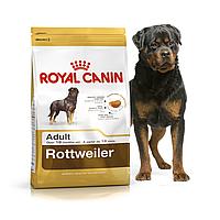 Royal Canin Rottweiler 3 кг для взрослых ротвейлеров