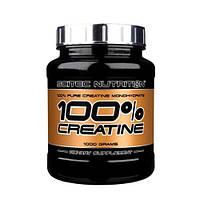 Креатин CREATINE 100% 1000 Г