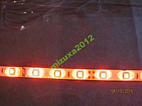 Лента диодная по метрам, цвет красный SMD 3528
