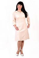Платья, платье женское, платья 2014, хлопок , интернет магазин платья, ( ПЛ 004) ,купить платья.