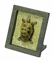 "Коллекционная рамка "" Черепаха"". Материал: картон."