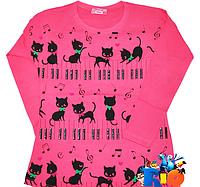 Лонгслив  для девочки  Турция  Atabay Коты Ноты