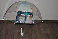 Зонт трость, полуавтомат, прозрачный,