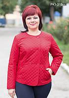 Женская короткая весенняя куртка цвет красный размер 44-54