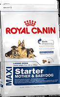 Корм для собак больших пород собак ROYAL CANIN MAXI STARTER упаковка 15 кг