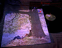 JOHN LENNON  1970   Apple Holland   ~ NM / NM