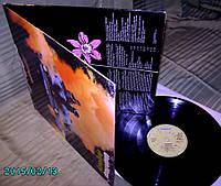 Uriah Heep  Salisbury' 71  BRONZE  GEMA  ~ NM / NM