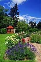 Обогреватель пленочный инфракрасный настенный Лаванда в саду 100*57 см Трио