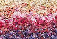 Фотообои на стену: Цветы - розы, пионы, гортензии. 8-965