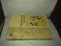 Японская поэзия. Золотой фонд японской литературы