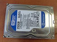 Вінчестер HDD Seagate 250 Gb 3.5 7200 SATA