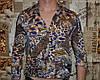 Блузка  женская 38 размер