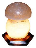 Артемовск Соляной светильник Гриб 3-4 кг обычная лампа