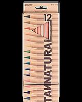"""Карандаши Marco  6100-12CB    12цв. """"Natural"""""""