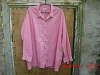 Рубашка Alpenland