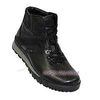 Мужские ботинки на шнуровке, осень/зима, кожа флотар и натуральный замш