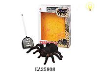 Игрушка паук 781 на р/у +свет. Детские игрушки, радиоуправляемый паук, реалистичные игрушки.Тарантул на р/у