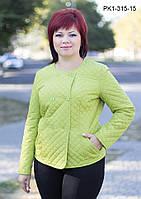 Женская короткая весенняя куртка цвет оливковый размер 44-54