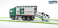 Игрушка Bruder Фургон  MAN для перевозки животных с фигуркой коровы  1:16 ( 02749)