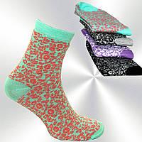 Носки женские лео мягкие Монтекс plus, бамбуковые цвета в ассортименте