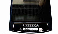 Индукционная плита Techno Star SIP 2100 SE