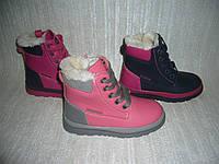 Зимние сапоги ботинки для девочек Clibee, размеры 27-32