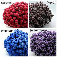 Калина сахарная для рукоделия и декора. расцветки