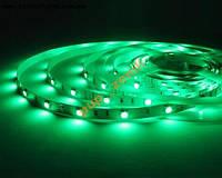 Лента светодиодная зеленая 5м 60д/м IP65 3528 сили
