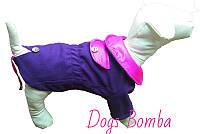 Пальто Dogs Bomba КР-3 размер 6(M)