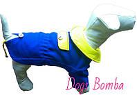 Пальто Dogs Bomba КР-4 размер 6(M)