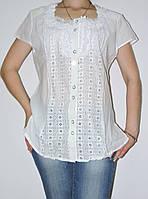 Блузка 52 р летняя женская белая