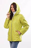 Женская демисезонная куртка  Murenna комбинированная  лайм 54-72 размеры