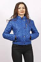 Короткая женская осенняя куртка  СК-1 синяя 42-50 размеры