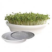Проращиватель Eschenfelder для семян микрозелени, 16 см