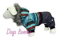 Комбинезон Dogs Bomba A-10 размер 6 (M)