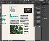 InDesign CC ALL Multiple Platforms Multi European Languages Licensing Subscription (Adobe)