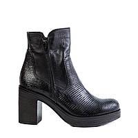 Женские ботинки Venezia 5821