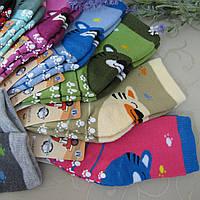 """Носки махровые детские c защ. от скольж. M (3-5 года). """"Корона"""".Детские  носки, носочки махровые  для детей , фото 1"""