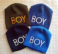 Детская демисезонная шапка для мальчика BOY