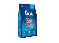 Brit Premium Cat Kitten 8 кг-корм для котят с курицей - копия