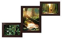 Фоторамка мультирамка деревянная Лесенка на 3 фотографии  (4 цвета)