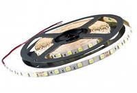 LED Светодиодная Лента LEDEX RGB SMD 5050, 60LED, 14.4W, 12V, IP65