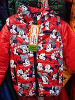 Демисезонная куртка  детская на девочку.