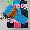 Гамаши для девочек 5-9 лет на МЕХУ .Детские колготы, гамаши, лосины для девочек