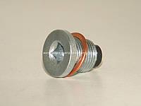 Болт маслянного поддона Рено Трафик II 1.9/2.0/2.5dCi- FA1 (Польша) 539970011