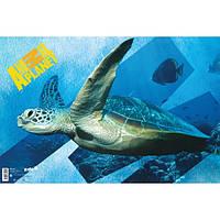 Подложка настольная Kite Animal Planet 60*40 см