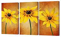 """Модульная картина """"Оранжевые цветы"""" 160х99 см"""