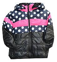 Куртка детская на девочку горох, фото 1