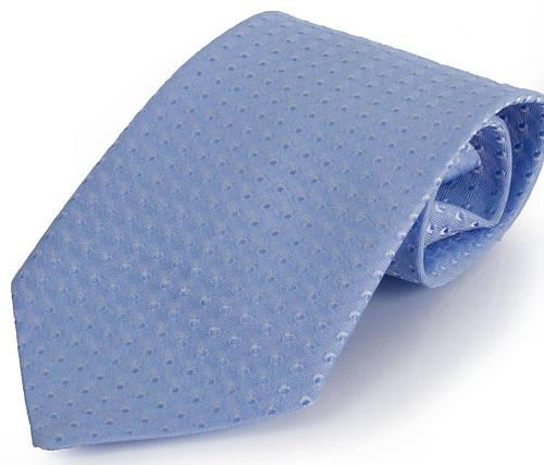 Красивый детский галстук SCHÖNAU & HOUCKEN (ШЕНАУ & ХОЙКЕН) FAREDP-02 голубой